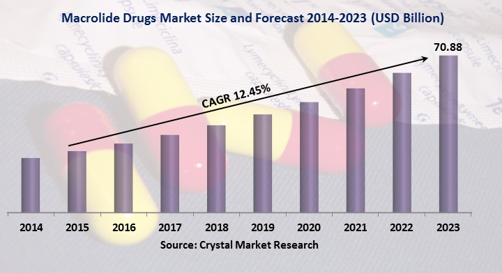 Macrolide Drugs Market
