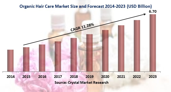 Organic Hair Care Market